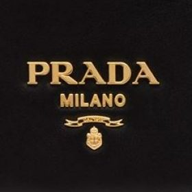Group logo of Prada Addicts